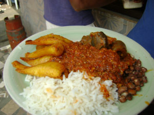 Rice and Dodo Food