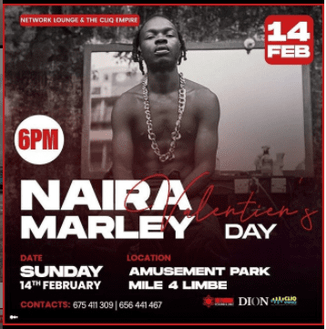 Naira Marley Valentine Concert in Cameroon