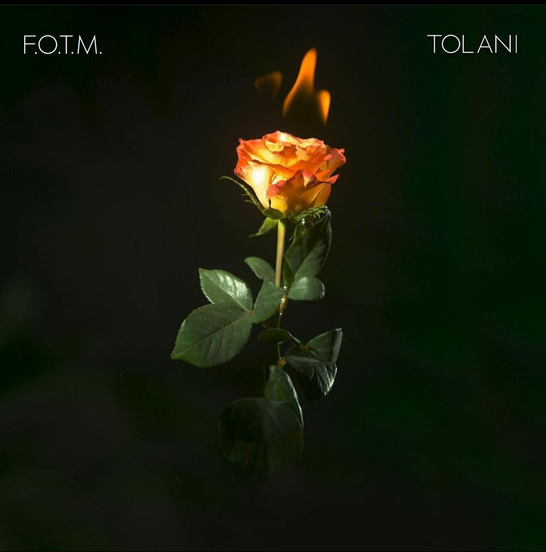 Fire On The Mountain By Tolani